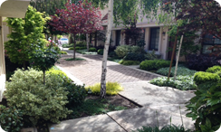 Apartment & HOA Landscaping